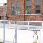 Sac Community Center ice rink